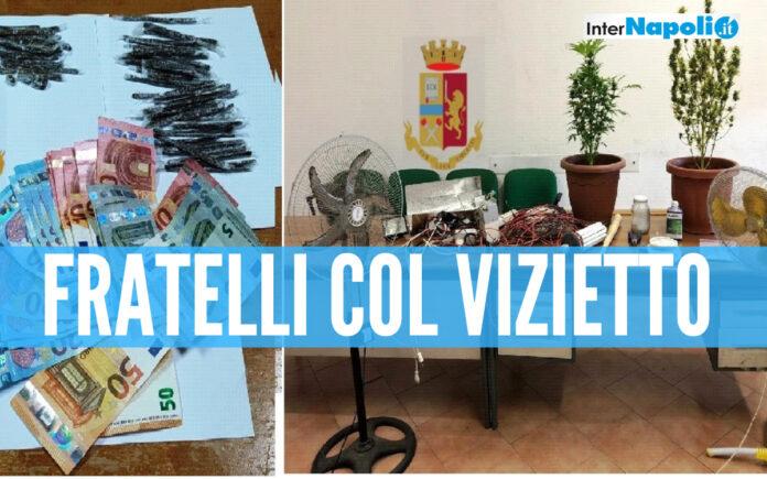 Doppio blitz della polizia a Casoria e Napoli: nei guai due fratelli, scoperta una serra stupefacente