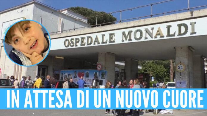 GIOVANNI ACERRA MONALDI