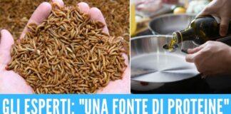 larve mangiare