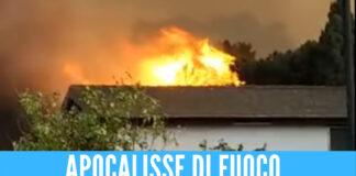 Incendi in Sicilia, bilancio drammatico: case evacuate e lido distrutto dalle fiamme