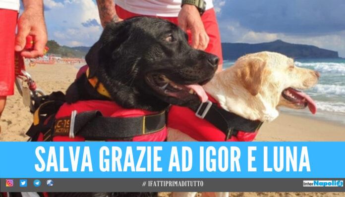 Rischia di annegare a 15 anni, Ilenia salvata da 2 cani bagnino in Campania