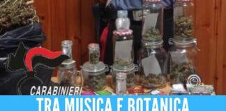 marijuana musica classica