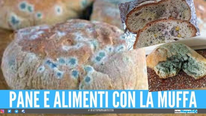 Pane con la muffa