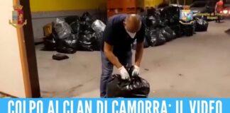 Blitz della Polizia e della Finanza di Napoli, sequestrati 1600 kg di marijuana