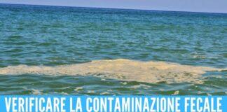 Chiazza di mucillagine in mare Arpac interviene in provincia di Napoli