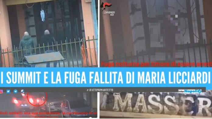 La fuga fallita in Spagna, i summit in casa e le sentinelle di guardia: la cattura di Maria Liccardi