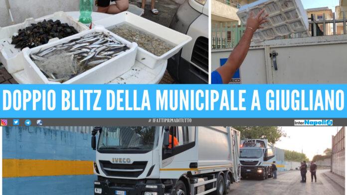 Giugliano, doppia operazione della Municipale: 3 camion multati allo Stir, pescheria abusiva sanzionata per 5mila euro