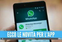 Nuovo aggiornamento WhatsApp, nasconderà l'orario dell'ultimo accesso